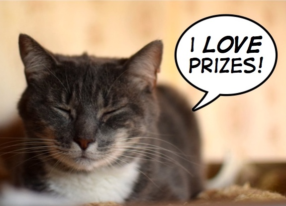 Do You Like To Win The Cat Connection